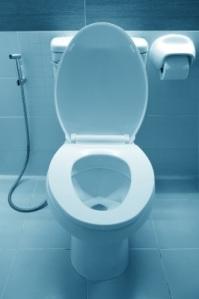 free photo76 toilet